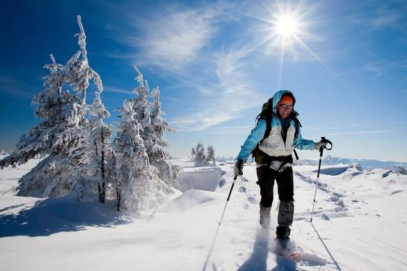 Schneeschuh- und Winterwandern - Flachau - Salzburger Land